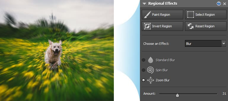 photo editor blur background app for pc download