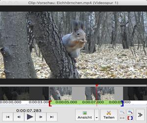 Vorschau VideoPad Video-Editor Mac - Bild 3